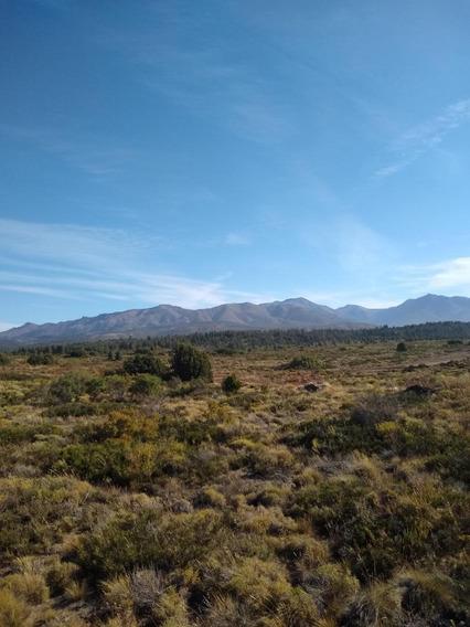 Trato Directo Vende Terreno Patagonia Argentina