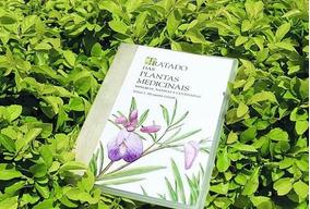 Livros Plantas Que Curam (medicinais)