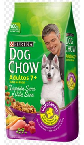Dog Chow Adulto Mayor 7años +pouch Pedigree
