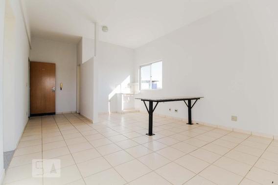 Apartamento Para Aluguel - Vila Lucy, 2 Quartos, 45 - 893113316