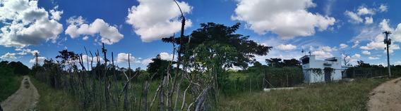 Venta De Terreno En Hato Nuevo, Manoguayabo *negociable*