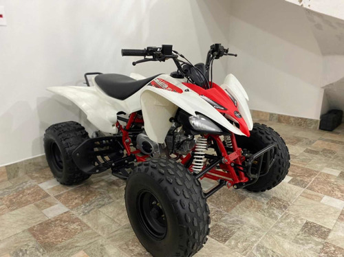 Quadriciclo Raptor 125