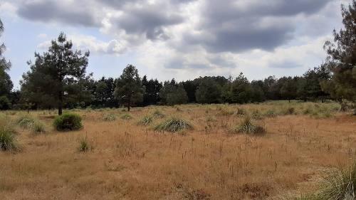 Terreno Para Rancho