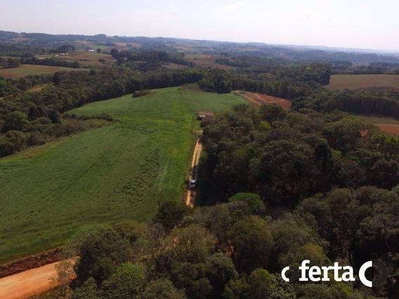 Terreno - Serrinha - Ref: 147 - V-147