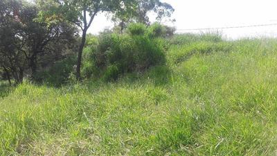 Terreno Á Venda Em Laranjeiras. - Te0115