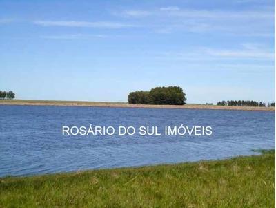 Fazenda Com 9.530 Hectares No Uruguai