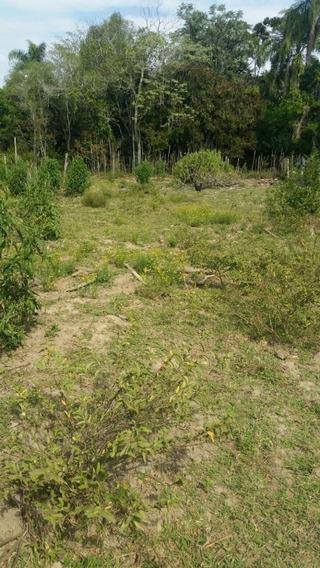 Terreno Em São Miguel Arcanjo