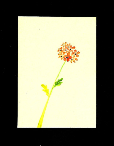 Imagen 1 de 9 de Obras De Arte En Pequeño Formato. Arte Sumi-e. Pintura China