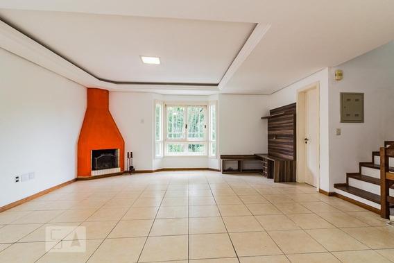 Casa Para Aluguel - Tristeza, 3 Quartos, 176 - 893088381