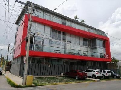 Departamento En Renta En Playa Del Carmen
