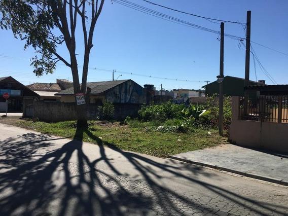 Terreno Para Venda Em São José Dos Pinhais, Sao Marcos - 302028001_2-587998