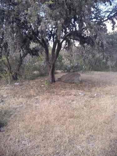 Terreno En Venta Rancho Paniagua