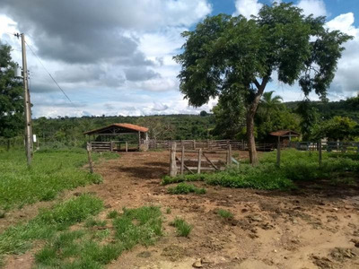 Fazenda Para Venda Em São Miguel Do Passa Quatro, 2 Dormitórios, 2 Banheiros, 5 Vagas - 286