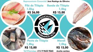Filé De Tilapia