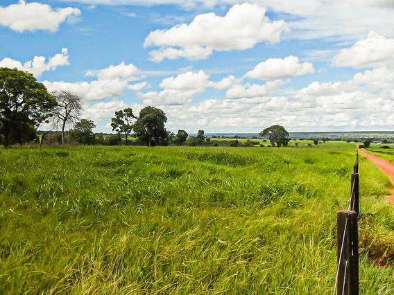 Nioaque Ms Fazenda 2.673 Hectares Cód. Fms-76