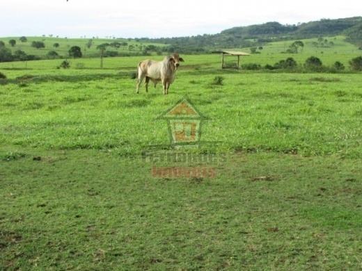 Fazenda Rural À Venda, Bairro Inválido, Cidade Inexistente - Fa0089. - Fa0089
