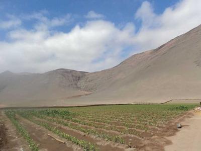 Ruta A-32 / Arica