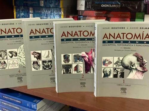 Anatomia De Rouvier 11 Va Edición