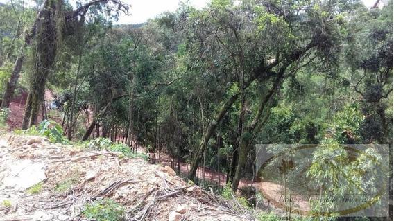 Terreno Para Venda Em Campos Do Jordão, Atalaia - 254