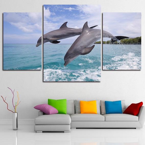 Cuadros Tripticos Modernos Animales Delfines
