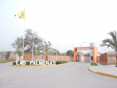 Terreno En Carabayllo Las Palmeras Negociable