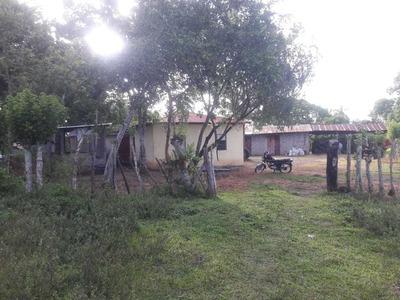 Finca Ganadera En Los Pino De Monte Plata