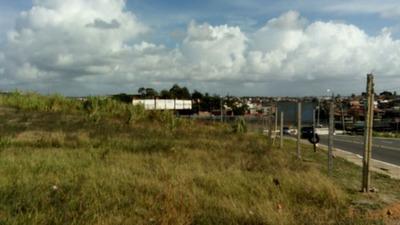 Terreno Excelente Na Alameda Da Praia, Frente Pra Pista ! (oportunidade) - Vtsmmb