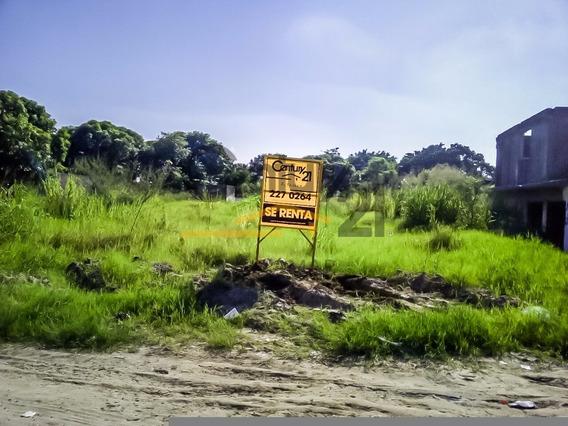 Terreno Comercial En Renta, Col. Monte Alto, Altamira, Tamaulipas.