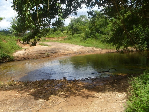 Fazenda A Venda Em Lizarda -to( Excelente P/soja E Pecuária) - 220