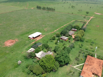 Fazenda A Venda Em Nova Andradina - Ms (pecuária) - 968