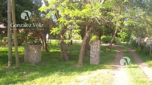 Imagen 1 de 4 de Venta/terreno