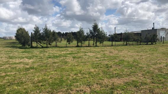 Terreno En Venta - Colinas De Carrasco - Barrio Privado- A17
