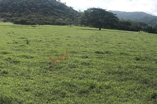 Imagen 1 de 7 de Se Vende Rancho En Villaflores, Chiapas Rancho En Melchor Ocampo, Villaflores