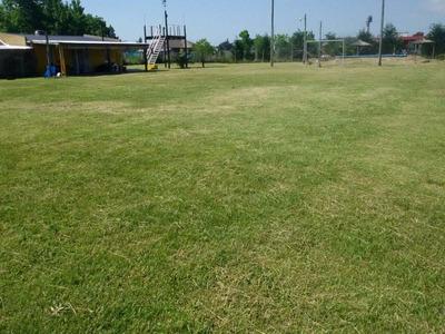 Casa Quinta En Domselaar Cancha De Futbol, Pileta, Voley