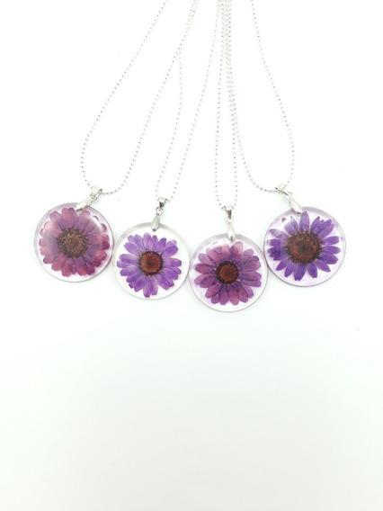 Colar Gratidão Feminino Flor Natural Margarida Lilás