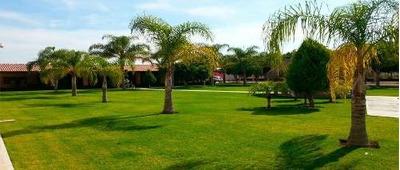 Rancho En Venta Remate A Precio De Terreno Tlajomulco