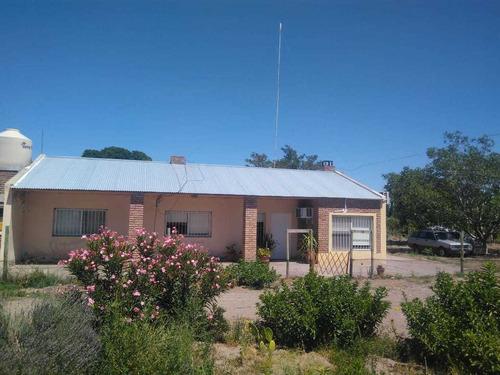Imagen 1 de 14 de Finca10 Has. Con Casa. Excelente. Gral. Alvear, Mendoza