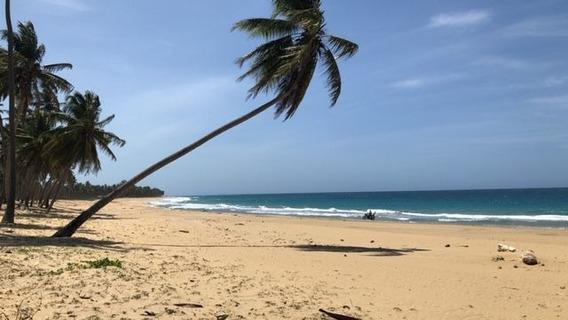 Venta Terreno Frente A Playa, En Playa El Limon