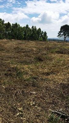 Terreno Muito Bem Localizado Residencial Ou Comercial.bruno