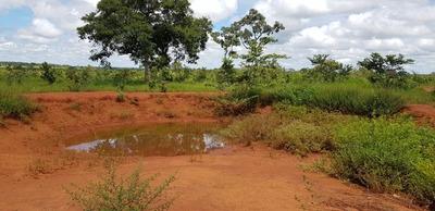 Fazenda A Venda Em Lagoa Da Confusão-to (soja E Pecuária) - 749