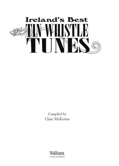 Curso Tin Whistle Música Celta