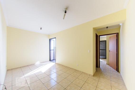 Apartamento Para Aluguel - Centro, 1 Quarto, 66 - 893097459