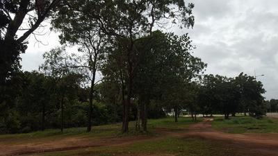 Terreno Em Plano Diretor Sul, Palmas/to De 2925m² À Venda Por R$ 700.000,00 - Te95552
