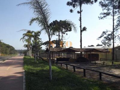 Casa De Shows Paraiso Sertanejo - Embu Guaçu - 110