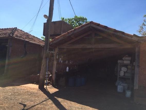 Sítio Em Zona Rural, Alto Alegre/sp De 230m² 3 Quartos À Venda Por R$ 1.000.000,00 - Si82515