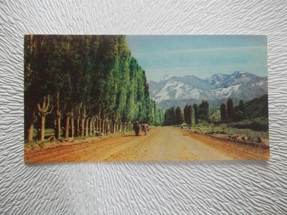 8304- Postal Mendoza, Potrerillos A Cancha De Esqui