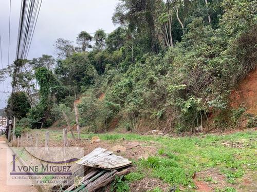 Imagem 1 de 5 de Terreno Em Centro  -  Miguel Pereira - 3319