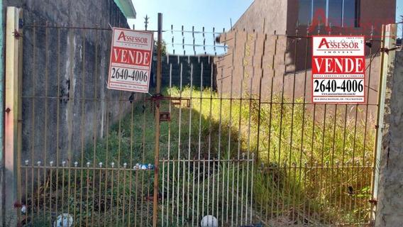 Terreno 5x25 - Doc. Ok - Próximo A Av. São Miguel - Te0008