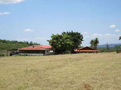 Fazenda Rural À Venda, Em Corumbá-ms - Codigo: Fa0209 - Fa0209