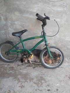 Bicicleta Rod 14